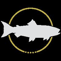 haidmühler-fischladerl-quellfisch-bestellen